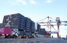 Hai Phong International Container Terminal welcomes first ship