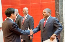 Mozambique welcomes Vietnam's investment: President Filipe Nyusi