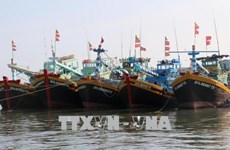 Fishermen struggle to do their job