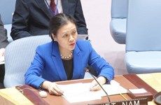 Vietnam emphasises obligation to solve disputes peacefully at UNSC debate