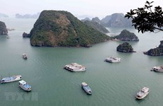 Quang Ninh looks to optimise sea tourism potential