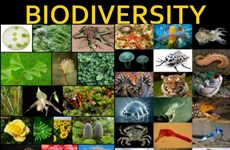 Thailand to create a biodiversity database