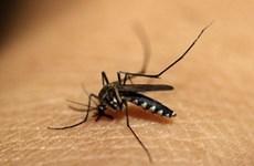 Southeast Asian nations, China pledge to fight malaria
