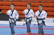 Asian Taekwondo championship kicks off in HCM City