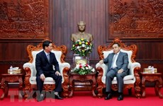 Vietnamese, Lao fronts tighten cooperation