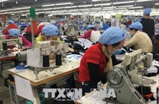 Deputy PM okays plan to restructure industrial sector
