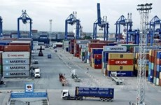 Abandoned imports pile up at HCM City's ports