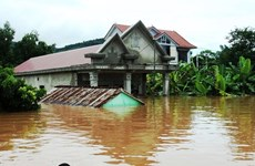 Quang Nam hands over flood-proof houses to affected families