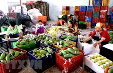 Vietnam's fruit, vegetables export sees impressive growth