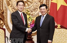 Deputy PM lauds Japan's support for Vietnam