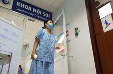 Health Ministry gives recommendations to prevent A/H1N1 flu