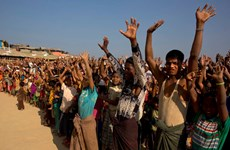 Myanmar willing to take back all Rohingya refugees