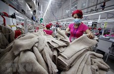 Vietnamese garment firms expect to navigate Australia