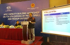 Solutions sought to help MSMEs make full use of FTAs