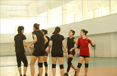 Asian volleyball champs to kicks off in Bac Ninh this weekend