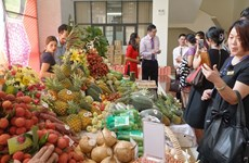 Vietnam, China promise optimal conditions for lychee export