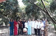 Swedish ambassador highly values quality of Thanh Ha litchi