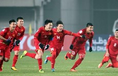 Vietnam to train in Korea for AFF Cup