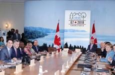 Deputy FM: G7 member states appreciate ties with Vietnam