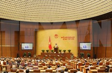 National Assembly's 17th working day