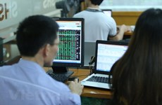 VN-Index gains slightly to 1,039 points on June 11