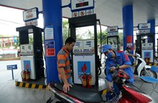 Vietnam spends 3.6 billion USD on petrol imports