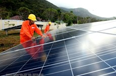 Binh Dinh approves 63-million-USD solar power project