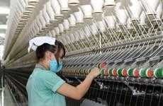 Construction of 50-million-USD wool factory begins in Da Lat
