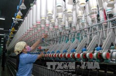 Vietnam works to bolster exports to China