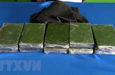 Meth, heroin traffickers arrested in Lao Cai, Thanh Hoa