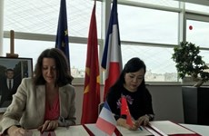 Vietnam, France look to foster health link