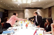 Vietnam, Israel hold fifth round of negotiations on FTA
