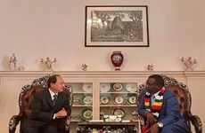 Zimbabwe, Vietnam should build on traditional ties: President
