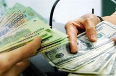 Reference exchange rate resumes rise