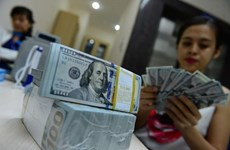 Dollar hike won't significantly affect Vietnam's economy