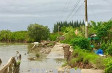 Ca Mau: Measures to mitigate damages from natural disasters