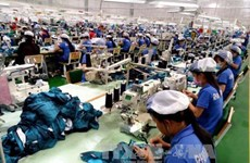 Vietnam aims to resolve investor disputes with government