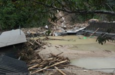 VFF Central Committee sends sympathies to flood victims