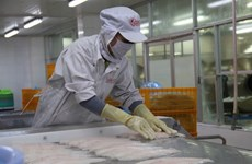 Middle East- potential market for Vietnamese seafood