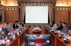 HCM City, Finland discuss smart urban development