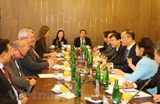 Vietnamese, Czech legislatures look to boost ties