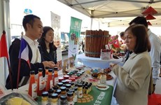 Programme promotes Vietnamese localities in France