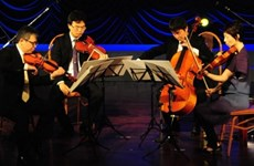 Free concerts delight locals in Da Nang