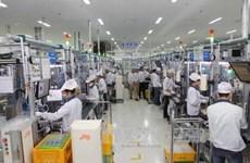 Deputy PM hails overseas Vietnamese businesses' efforts