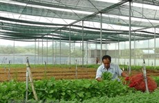 Human resource training key to boost agriculture 4.0
