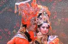 HCM City theatres work to preserve cai luong