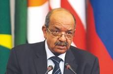 Vietnam, Algeria look to further cooperation