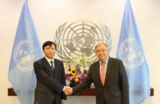 New Vietnamese Ambassador to UN presents credentials