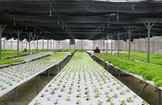 Seminar talks high-tech agriculture in Mekong Delta