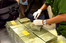 Large cross-border drug trafficking ring raid